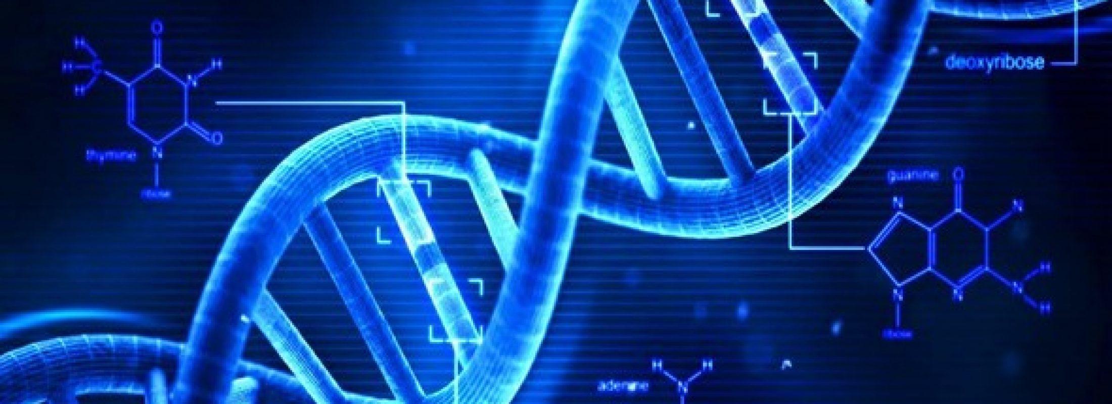 """Bilim adamları """"yarı-sentetik"""" organizma geliştirdi"""