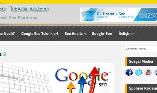 Google Seo Teknikleri