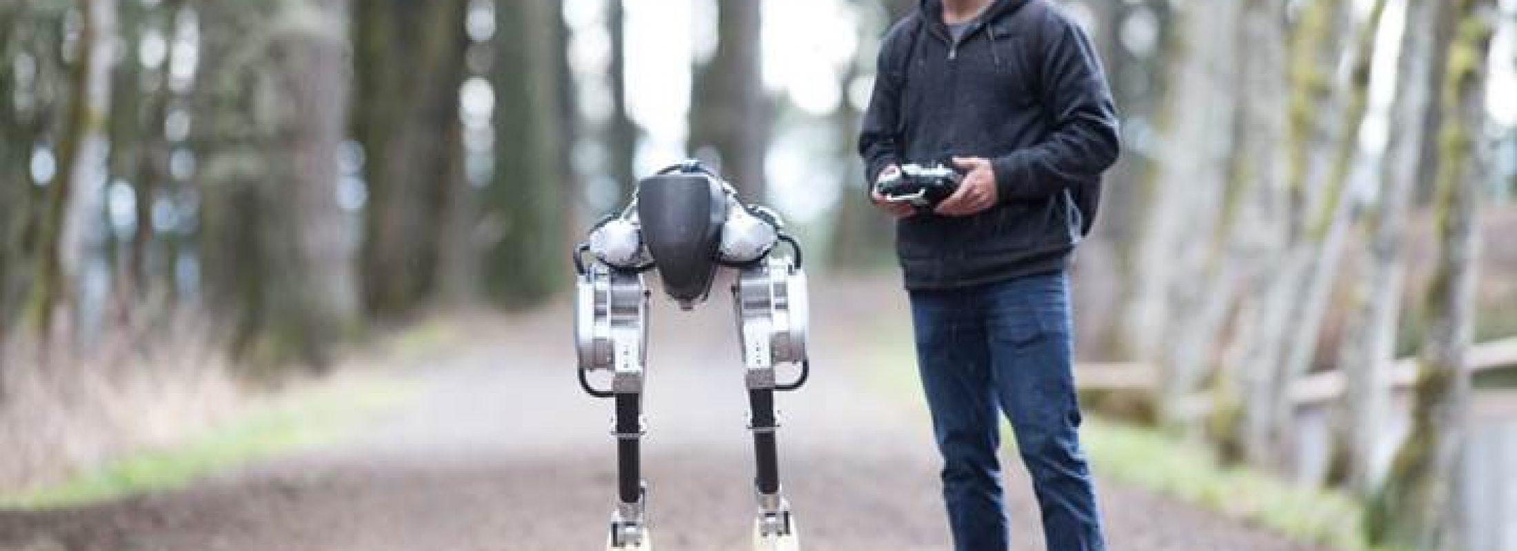 İki ayaklı robot Cassie, günün birinde size kargonuzu teslim edebilir