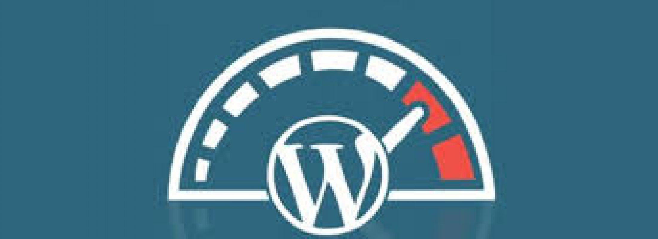 WordPress Hız Optimizasyonu